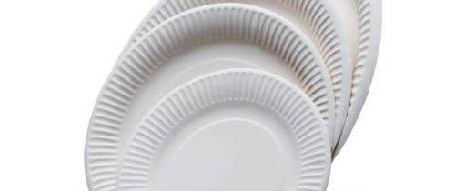 Vaisselle jetable biologique et écologique